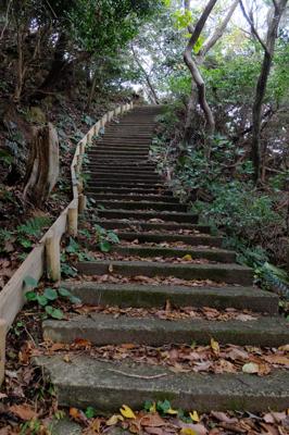 う〜〜、また階段だ・・・。...