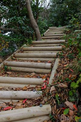 階段登ると・・・...