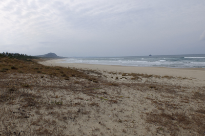 とりあえず海岸に出てみた。この...