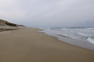 砂浜をひたすら真っ直ぐ・・・...