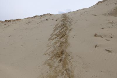 ・・・砂の崖を降りた・・・。雪...