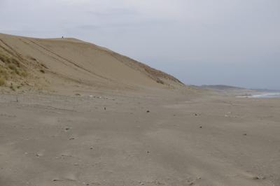 砂浜に出たけど、目の前は砂丘の...