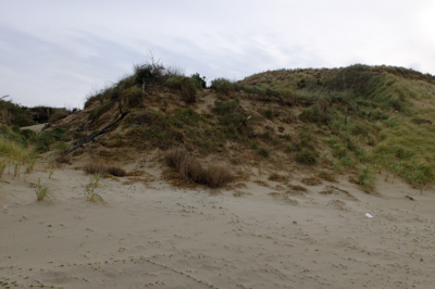 ・・・手前の草付きの丘に登る。...