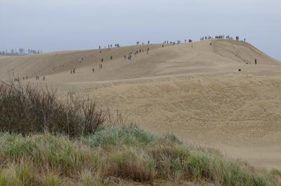 ふ〜、急斜面を登り切ると鳥取砂...