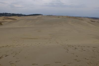 とりあえず砂丘の向こう側にいか...
