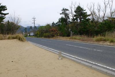 松林の向こう側を回り込むと車道...