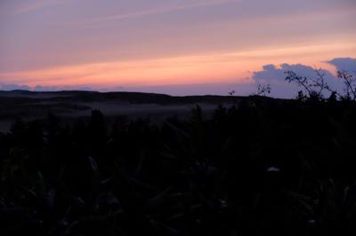 夕焼けの鳥取砂丘。...