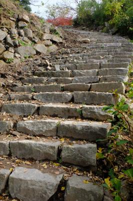 この石段を登りきれば・・・。...