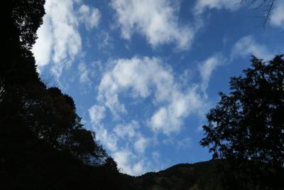 朝は曇っていたけど、青空が出て...
