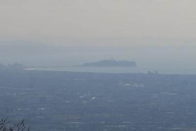 江ノ島がよく見える。...