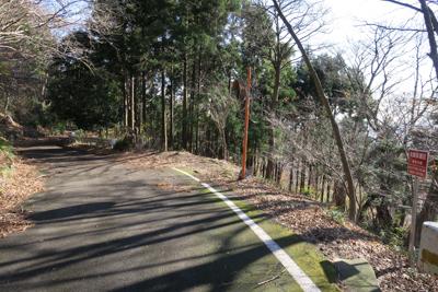 エボシ山への取付き点は日向林道...