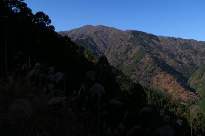 大山の山頂が見えた。...