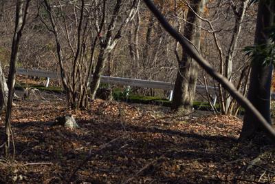 ・・・すぐ右に日向林道が見えた...