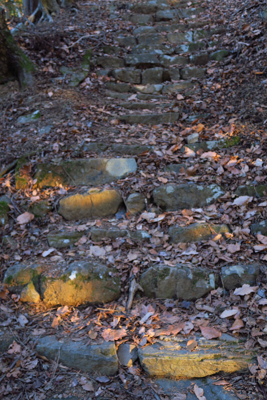 古そうな石の階段がある。こっち...
