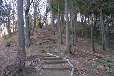 稜線まで一気に登ります。ここで...