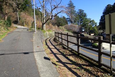 左の舗装道が今来た道、右の黄色...