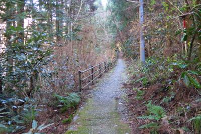 沢を渡ると歩きやすい道になる。...