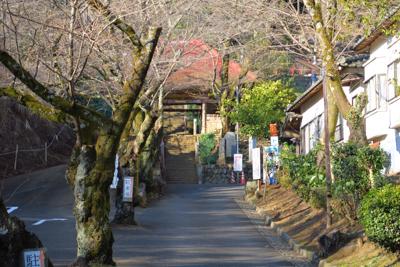 奥に長谷寺があります。2週間ほ...