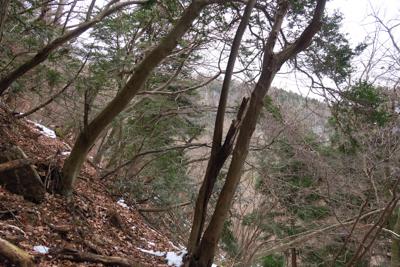 木々の間から今日の目的地が見え...