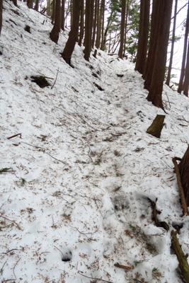 ・・・雪が思っていたより多い・...