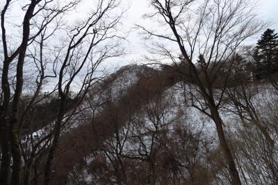仏果山が見えた。いつもなら周回...