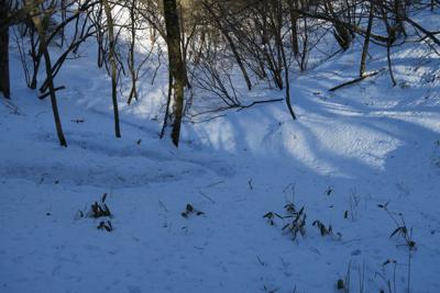 ブナ沢乗越からの下り、雪が柔ら...
