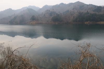 やはりこの時期は湖面の水位が高...