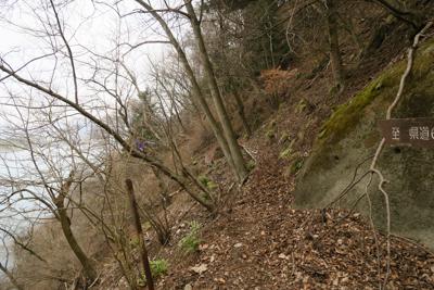 振り返る。ここで今日の登山道は...