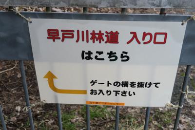林道へはゲートの脇から入れます...