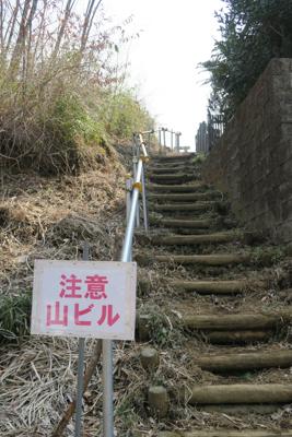 ・・・階段を登ると宮ヶ瀬湖が一...