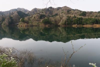 湖面が静かだね〜。...