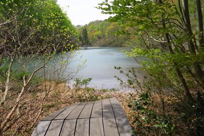 デッキ沿いに池の畔まで行ける。...
