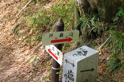ちなみに、ここに戸倉山への分岐...