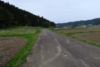 田園風景のなかを進みます。大網...