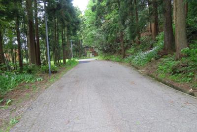 鬱蒼とした森の中の道を通り、道...