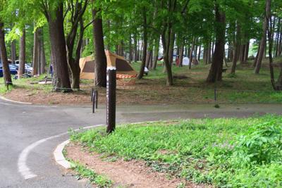 あっ! キャンプ場がある。ここ...