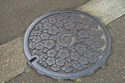 糸魚川のマンホールは・・・桜?...