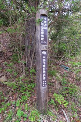 青木湖まで7.4km。すでにゴ...