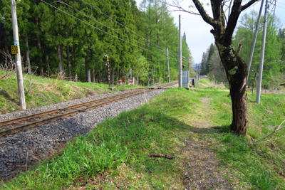 線路沿いを歩く。...