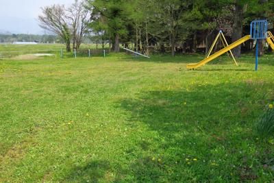 緑の絨毯の公園。...