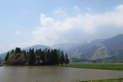 振り返る。左の森が飯森神社の神...