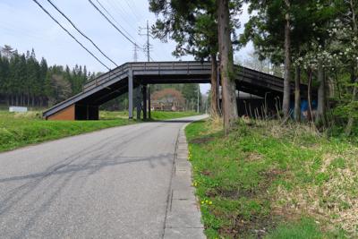 何だあれ? 普通の歩道橋かと思...
