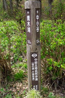 青木湖から16km過ぎた。今日...