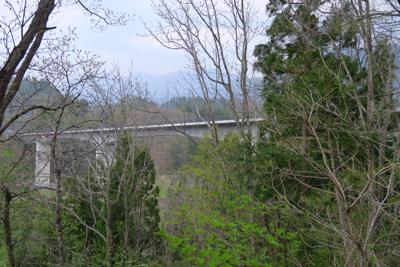 あ〜、あっちの橋を進めれば楽な...