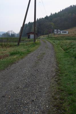 のどかな田園風景の中を歩きます...