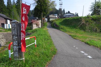 ・・・左です。道標と地面の文字...