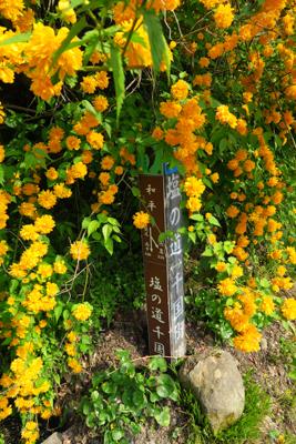 花に埋もれて道標があります。...