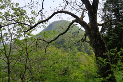 右上には特徴的な形の山(立山)...