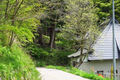 ・・・奥に池原諏訪神社が見えま...