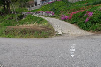 ルートは舗装路を越えて続いてい...